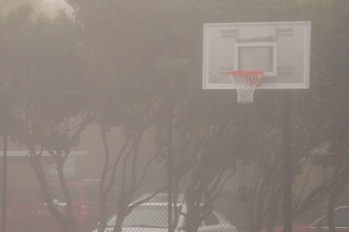 Basketball_fog